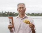 Sweet Success Of Fiji's Spicy Ginger