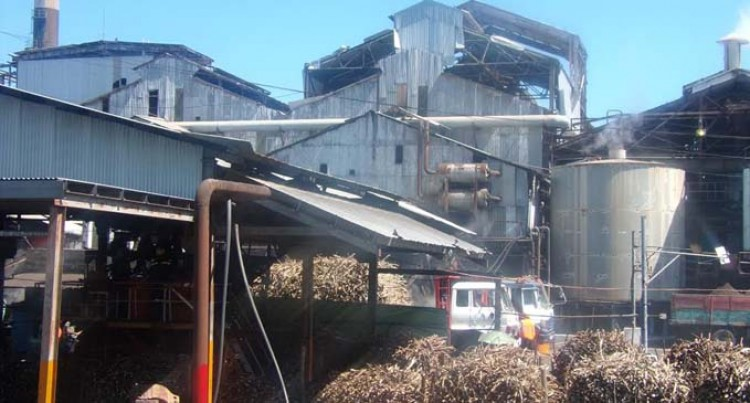 Sugar Tribunal May Review Crushing Date For Lautoka Mill