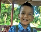 Boy Burned by Hot Springs Dies