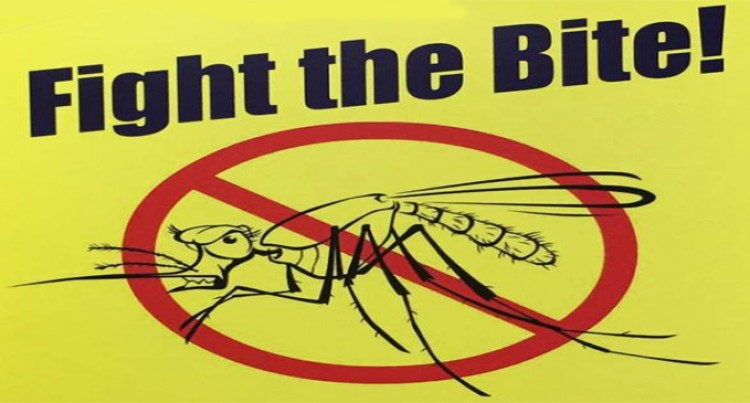 Fight The Bite On Dengue
