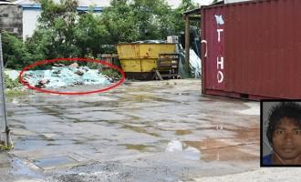 Falling Glass Sheets Kill Worker