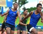 Nominate athletes: Lenoa