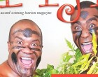 Explore Fiji Launches Websites
