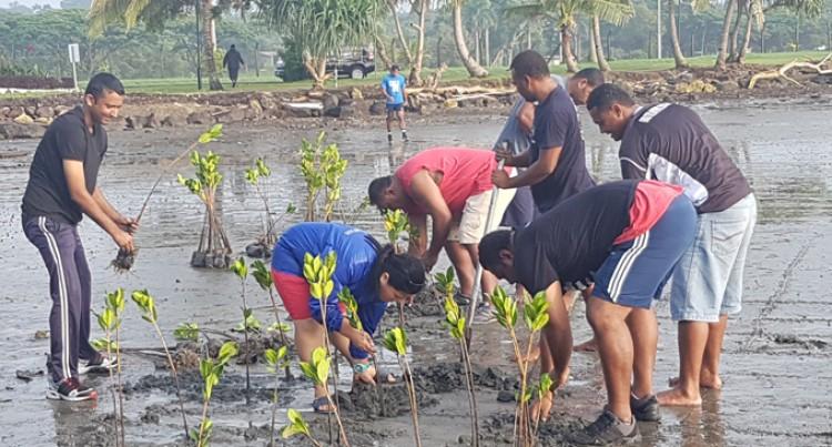 Ministry Resumes Mangrove Planting