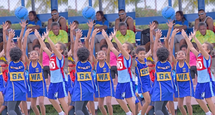 Suva Netters Start With Knockout