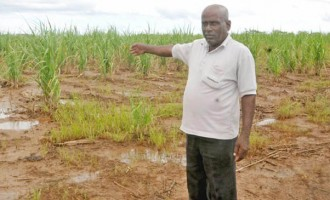 FNPF, Cane Farmers MOU  Finalised