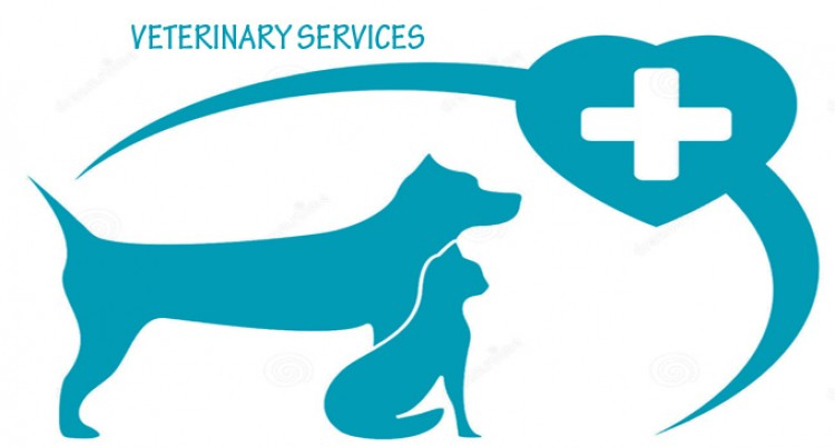 Mission To Improve Veterinary Services In Fiji