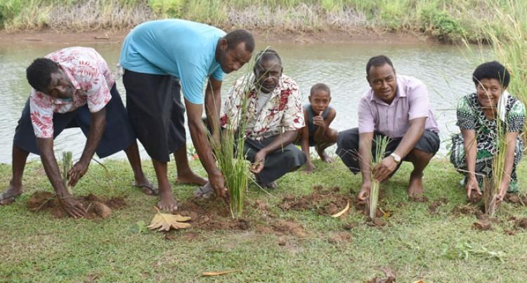 Fijians Mark Earth Day
