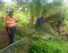 Naitonitoni Group Clean Up Navua Cemetery