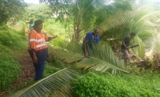 Naitonitoni Group Clean Up Navua Cemetery