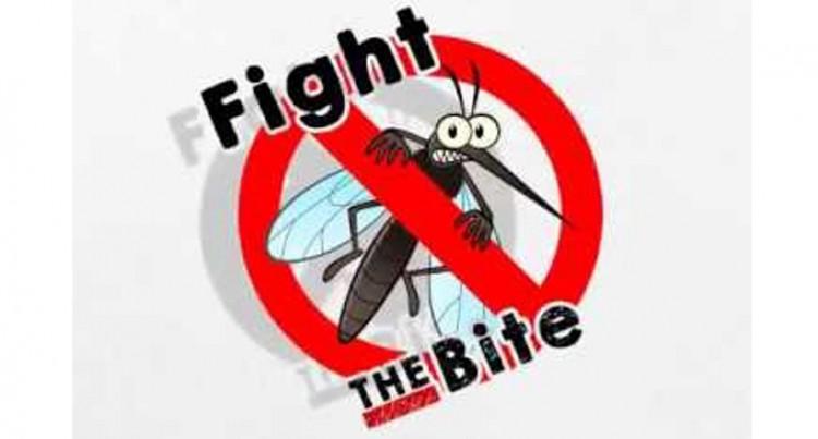 Ministry: 60 Dengue-Like Cases Treated At Labasa Hospital