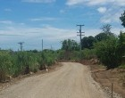 $1,044,900 For  Cane Access Roads