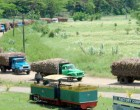 Exemptions For Cane Lorry  Operators