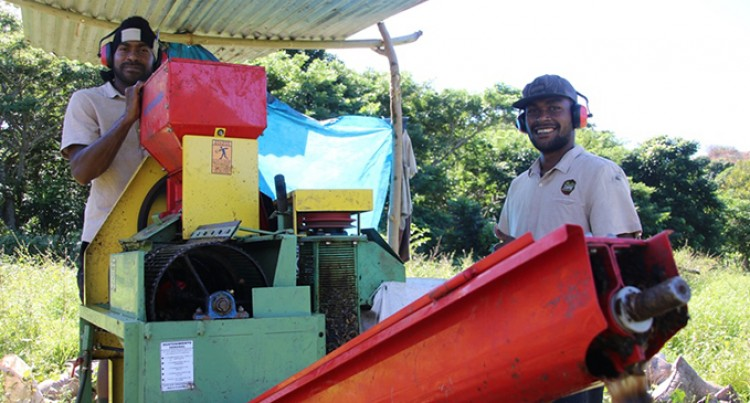 EU assists Bula Coffee's expansion to Vanua Levu