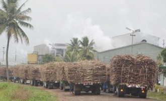 Editorial: Changes Indicate Better Days are Coming in Sugar Industry