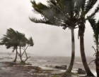 Middle East Fijian Peacekeepers Pour Out Cyclone Relief