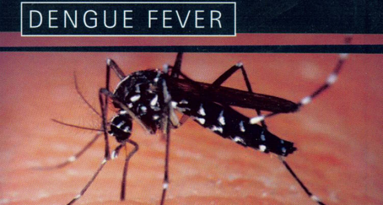 2 More Die As Dengue Cases Increase By  558 In 2 Weeks