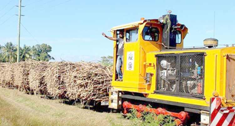 FSC Working With Farmers To Boost Sugar Production, Targets 10 Tonnes Hectare