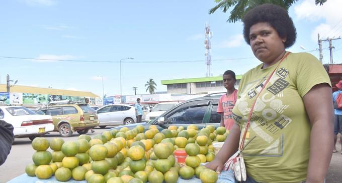 Mandarin Oranges Sell Like Hot Cake In Labasa