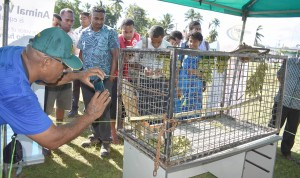The Giant Invasive Iguana was amain attraction during the 207 Northern Agriculture Show. Photo: Josaia Ralago
