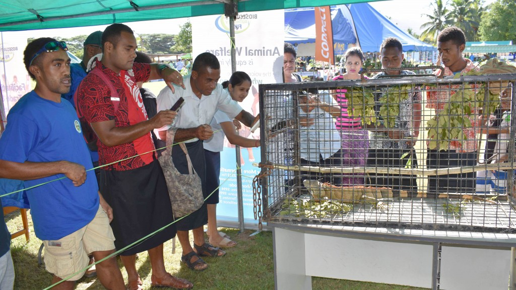 People flocked to have a glimpse of the Giant Invasive Iguana (caged) at the 2017 Northern Agriculture Show in Labasa on 25th May, 2017. Photo: Josaia Ralago