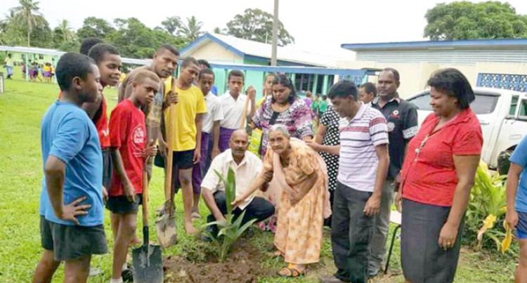 83-Year-Old Shanti Plants Trees At Noco