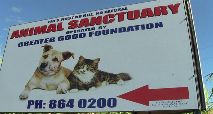Animal Sanctuary Seeks Help