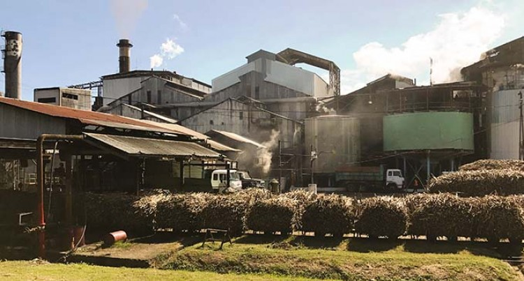 Fiji Sugar Corporation Confident In Production