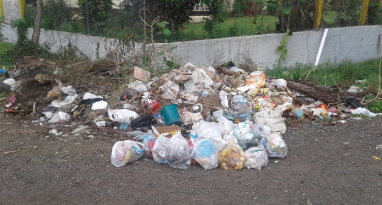 Rubbish Row Leaves  Uncollected Waste