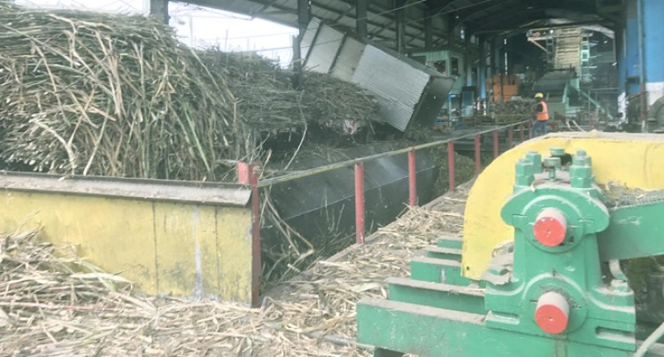 Cane Lorries Coming to Mills  in Good Time, Says FSC