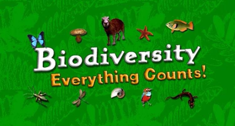 Biodiversity Fact Sheet