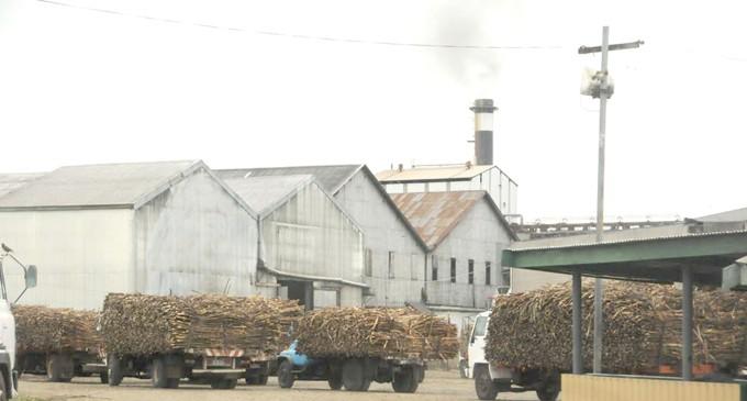 Lautoka Mill Back In Business