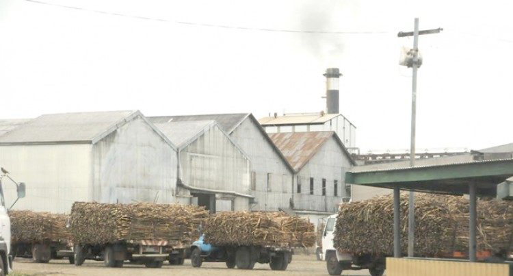 Lautoka Mill Back In Business