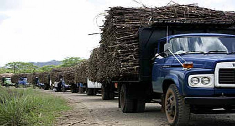 Provision Of Cane Trucks Are A Blessing
