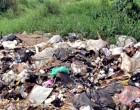 Health Unit Takes Action In Waituri Illegal Rubbish Dump Site