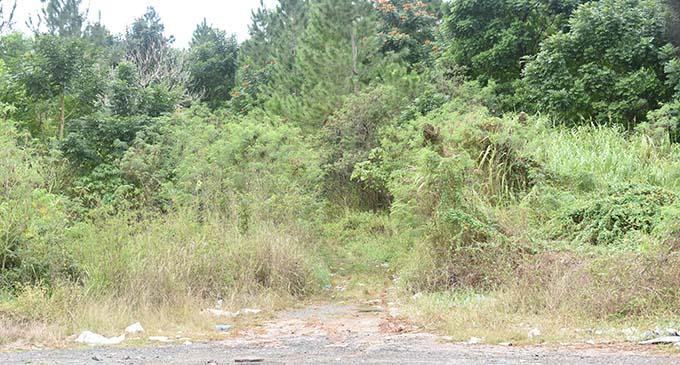 The same spot in Nabou, Nadroga, has now been cleared by the company. Photo: Waisea Nasokia