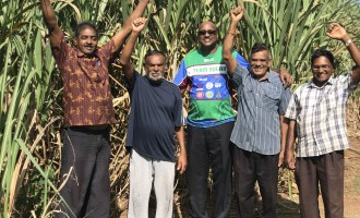 WHAT BUDGET MEANS TO YOU-Cane Farmers Find Govt Budget Sweet