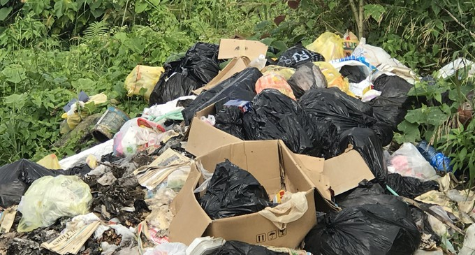 Tacirua Residents Frustrated With Non-Collection Of Rubbish