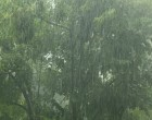 Rains over next days after dry spell: Kumar
