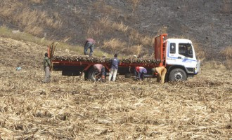 Over One Million Tonnes Crushed