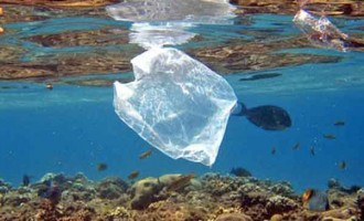 EDITORIAL: We Need To Up The Ante In The Battle To Reduce Our Use Of Plastics