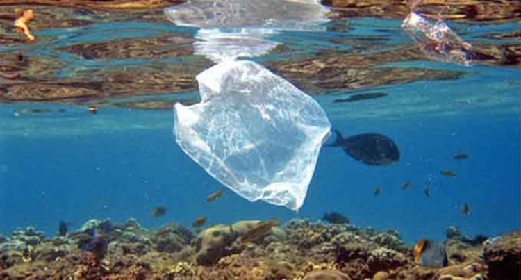 Editorial: Let's Get Our Facts Right On Plastic
