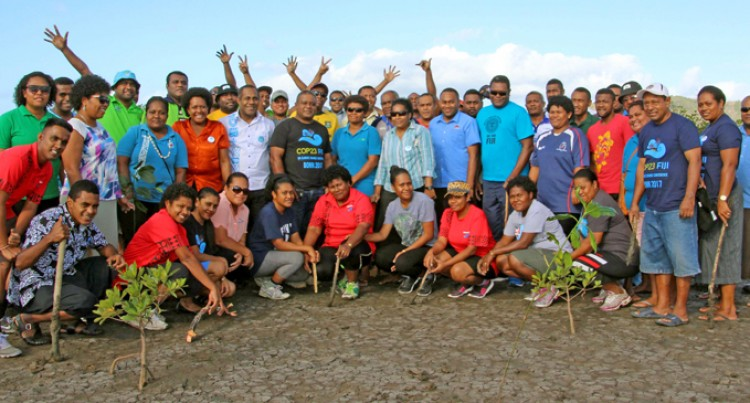 Civil Servants Plant Mangroves Along Foreshore In Labasa