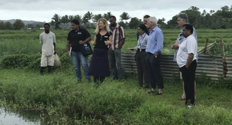 Sustainable Agriculture Farming: Big Developments In Navua