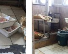 Photos Show Hospital Meat Cutting Area, Not Kitchen As Claimed: Davies