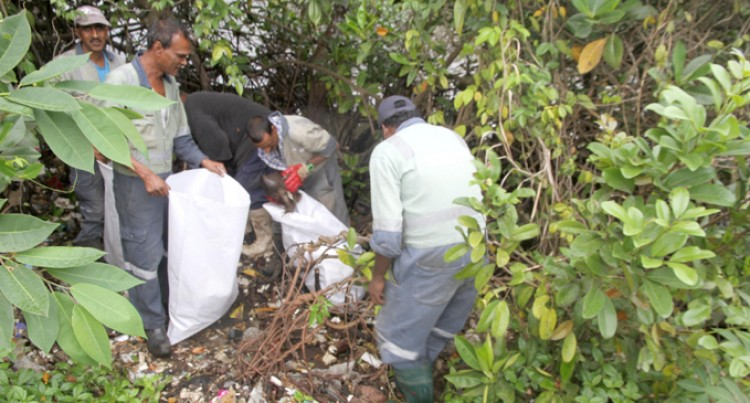 Nasinu Council Clears Rubbish Along Mangrove Swamps Near the Bailey Bridge in Laucala Beach