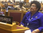 Dr Luveni Chairs General Assembly