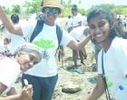 Climate Change: Fiji Airways Staff Set On Meeting Pledge
