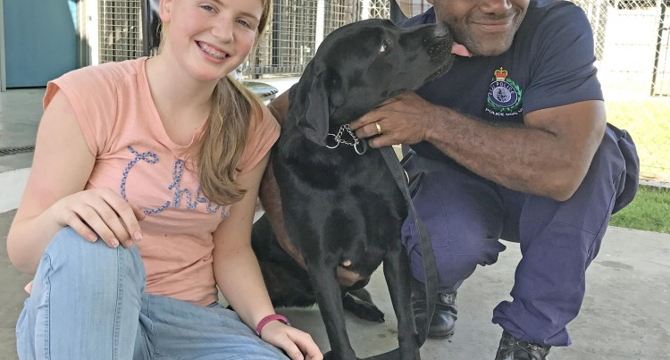 13-year-old Gets Wish to See Former Pet Dog Do a Good Job At K-9 Unit