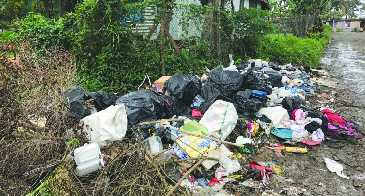 ANTI-LITTER:The Rubbish Keeps On Piling Up!